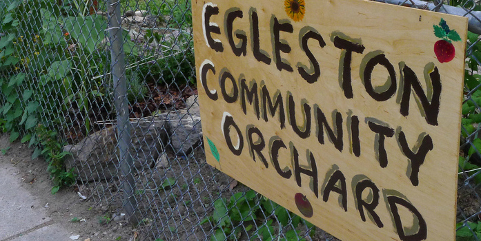 "A hand-painted wooden sign reading ""Egleston Community Orchard"" hung on a metal fence. Inside the fence are a number of green plants."