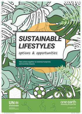 Sustainable Lifestyles: Options and Opportunities